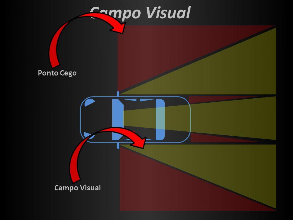 Campo Visual Ponto CegoCampo Visual