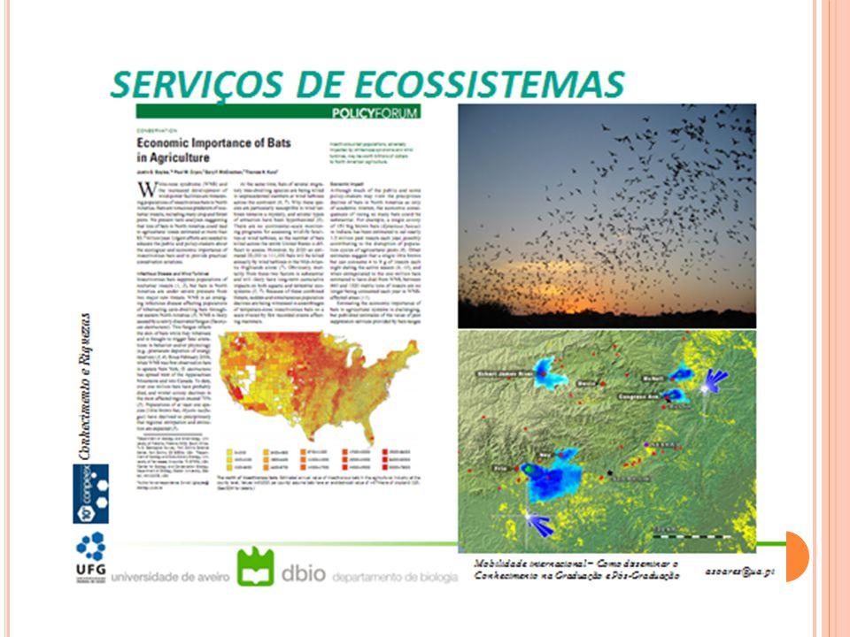 Os mapas a seguir foram extraídos de pesquisas do CIAMB e servem para ilustrar as diversas escalas de análise da mudança do uso do solo que trabalhamos no programa.