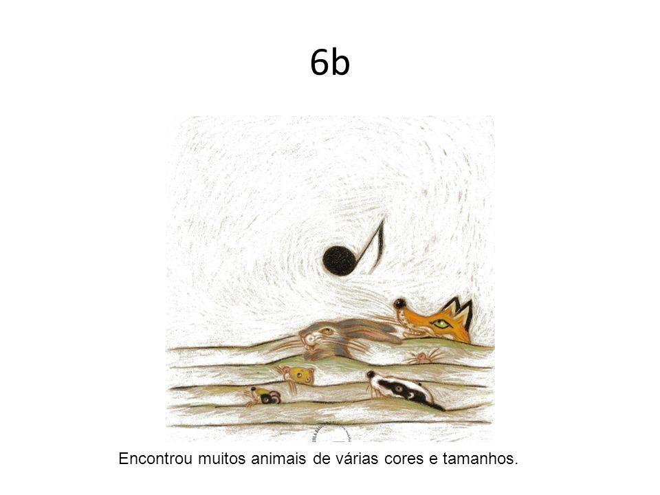 6b Encontrou muitos animais de várias cores e tamanhos.