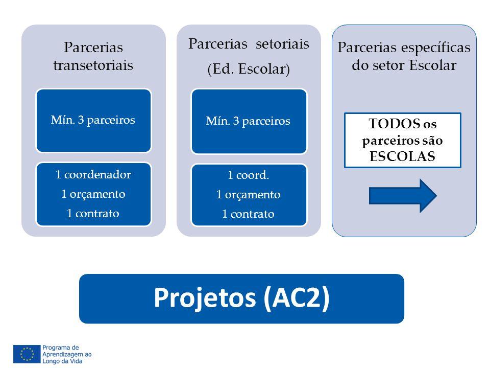 Projetos (AC2) Parcerias transetoriais Mín. 3 parceiros 1 coordenador 1 orçamento 1 contrato Parcerias setoriais (Ed. Escolar) Mín. 3 parceiros 1 coor