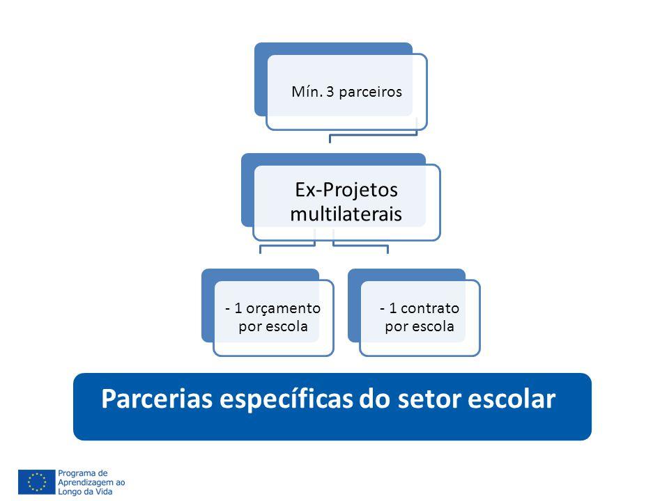 Parcerias específicas do setor escolar Mín. 3 parceiros Ex-Projetos multilaterais - 1 orçamento por escola - 1 contrato por escola