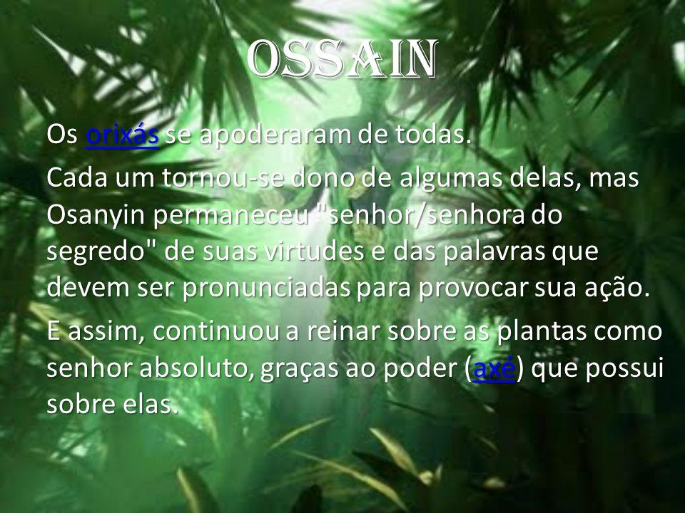 OSSAIN Os orixás se apoderaram de todas. orixás Cada um tornou-se dono de algumas delas, mas Osanyin permaneceu