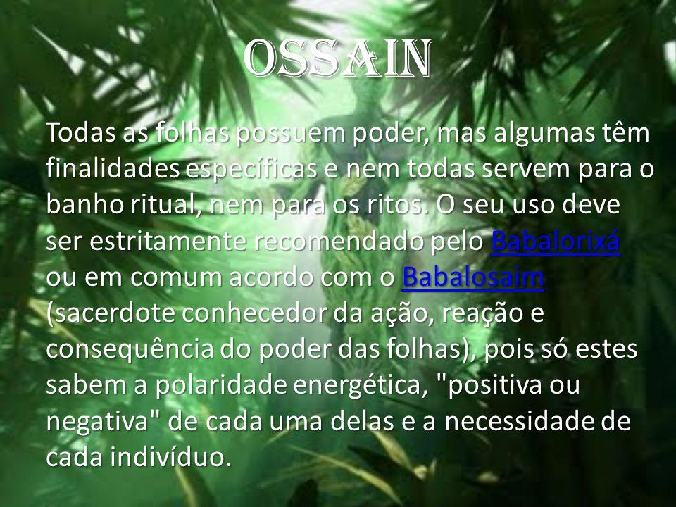 OSSAIN Todas as folhas possuem poder, mas algumas têm finalidades específicas e nem todas servem para o banho ritual, nem para os ritos. O seu uso dev
