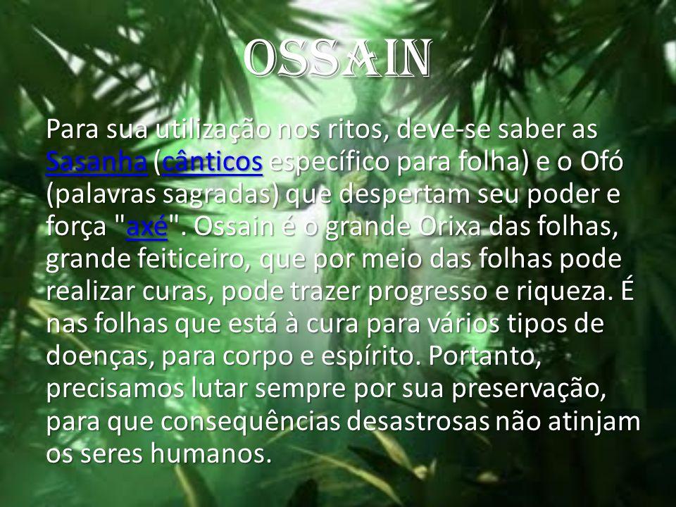 OSSAIN Para sua utilização nos ritos, deve-se saber as Sasanha (cânticos específico para folha) e o Ofó (palavras sagradas) que despertam seu poder e