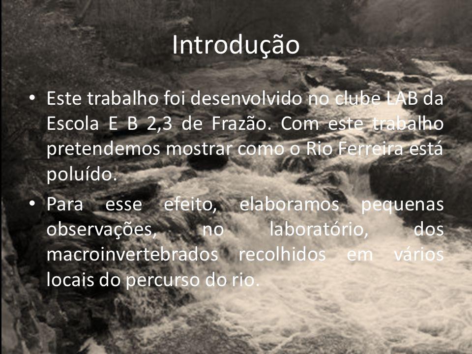 Introdução Este trabalho foi desenvolvido no clube LAB da Escola E B 2,3 de Frazão.