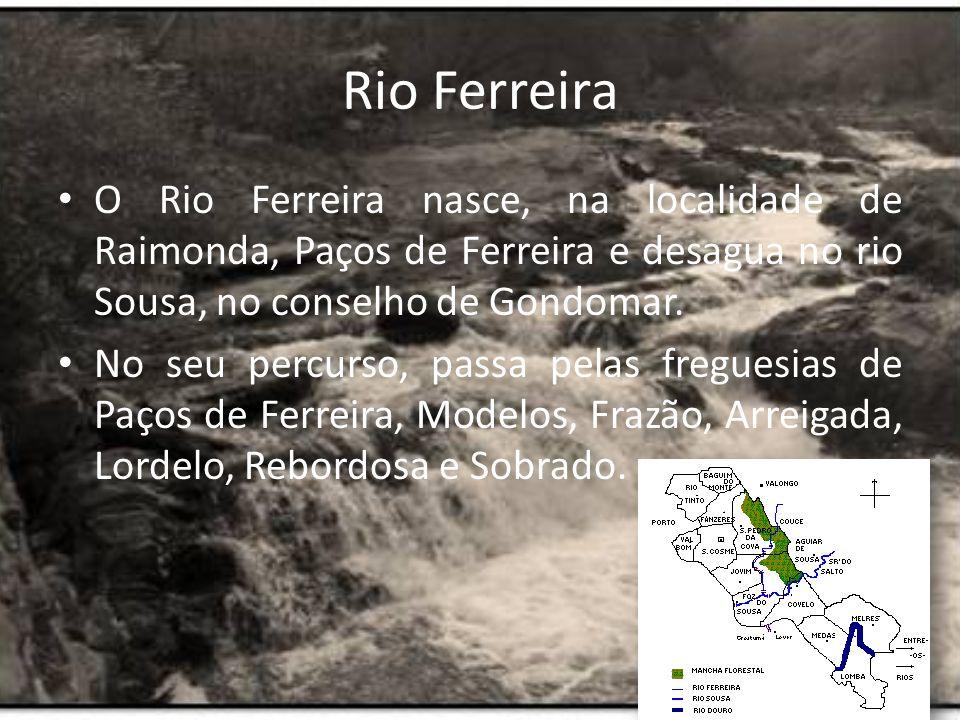 Como podemos saber se o rio está ou não poluído.