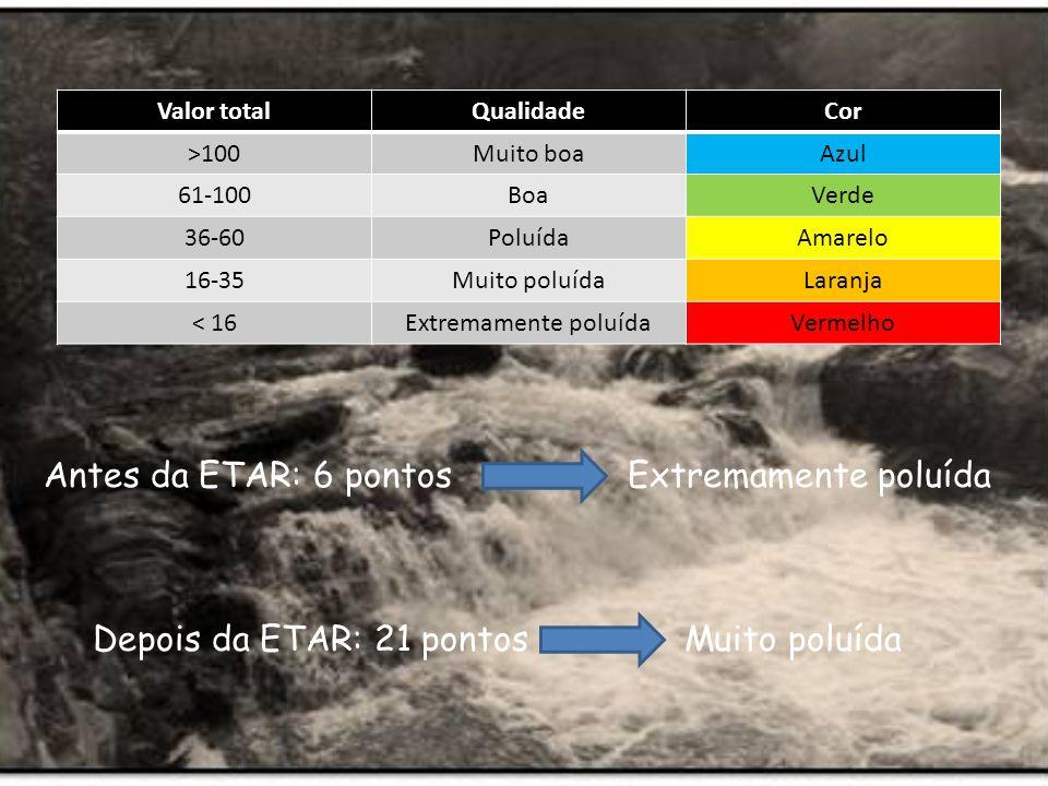 Antes da ETAR: 6 pontos Extremamente poluída Depois da ETAR: 21 pontos Muito poluída Valor totalQualidadeCor >100Muito boaAzul 61-100BoaVerde 36-60PoluídaAmarelo 16-35Muito poluídaLaranja < 16Extremamente poluídaVermelho