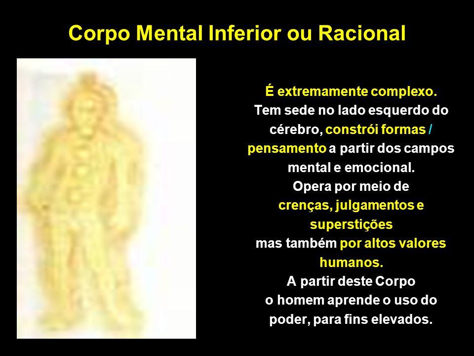 Corpo Mental Inferior ou Racional É extremamente complexo. Tem sede no lado esquerdo do cérebro, constrói formas / pensamento a partir dos campos ment