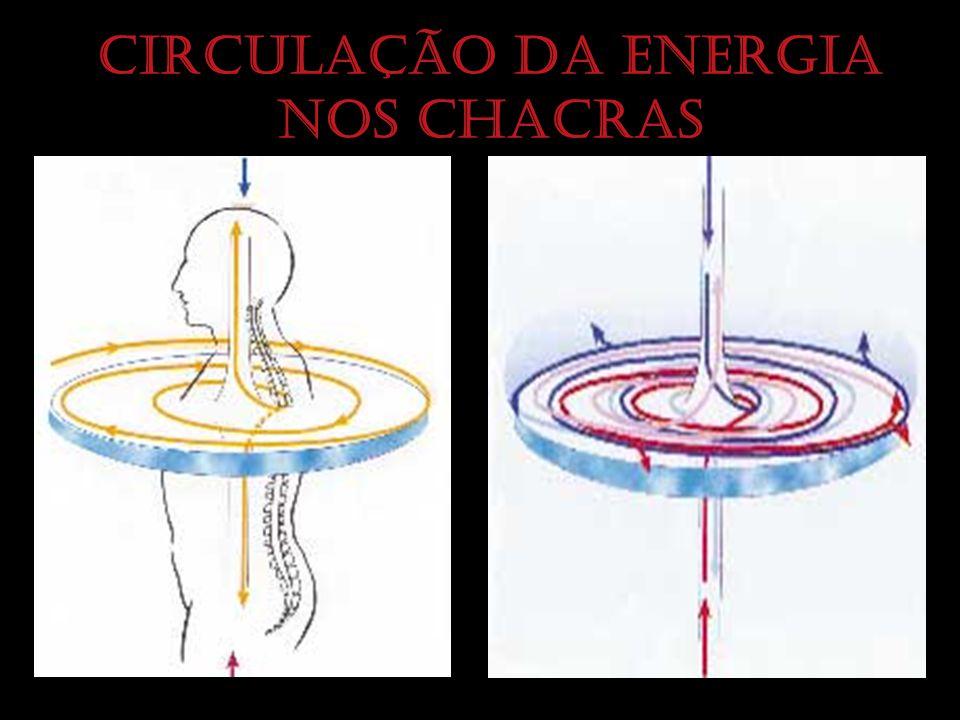Circulação da energia nos chacras