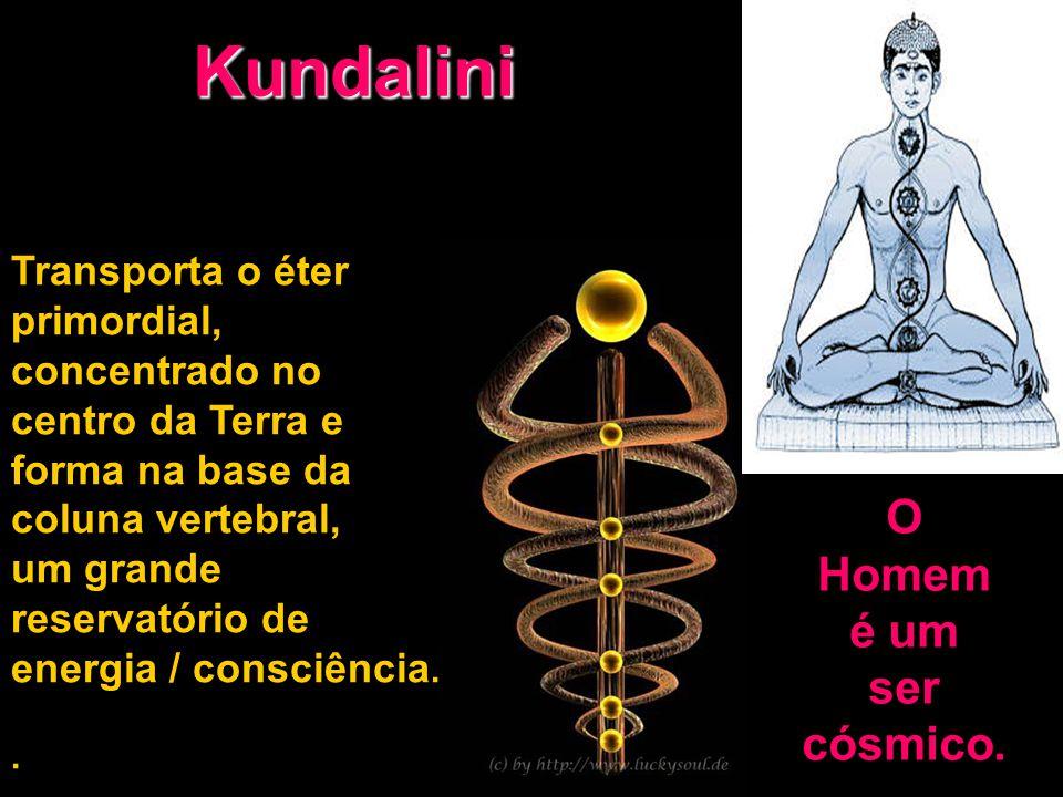 Kundalini Transporta o éter primordial, concentrado no centro da Terra e forma na base da coluna vertebral, um grande reservatório de energia / consci