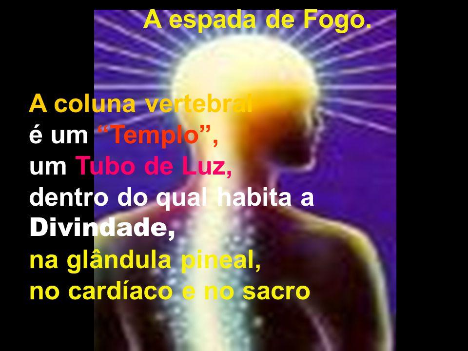 """A espada de Fogo. A coluna vertebral é um """"Templo"""", um Tubo de Luz, dentro do qual habita a Divindade, na glândula pineal, no cardíaco e no sacro"""