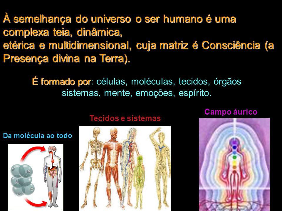 É formado por É formado por: células, moléculas, tecidos, órgãos sistemas, mente, emoções, espírito. Da molécula ao todo Tecidos e sistemas Campo áuri