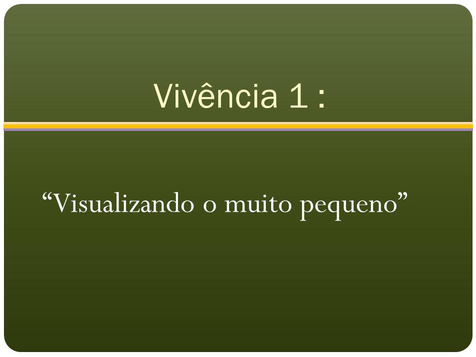 """Vivência 1 : """"Visualizando o muito pequeno"""""""
