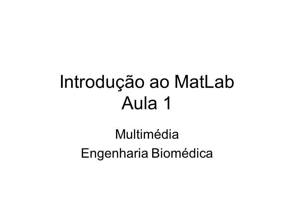 Introdução ao MatLab Aula 1 Multimédia Engenharia Biomédica