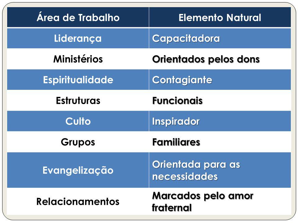 Área de TrabalhoElemento Natural LiderançaCapacitadora Ministérios Orientados pelos dons EspiritualidadeContagiante EstruturasFuncionais CultoInspirad