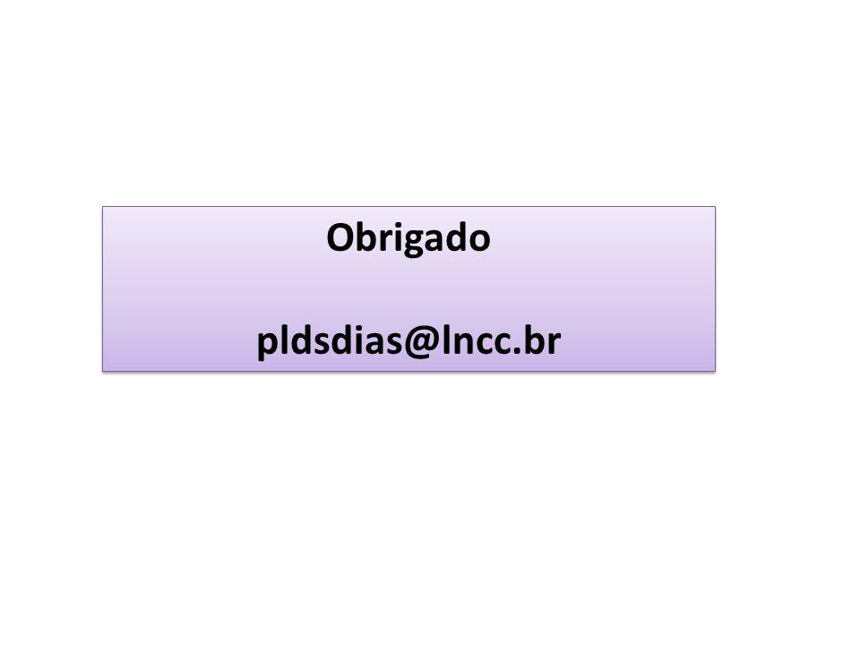 Obrigado pldsdias@lncc.br Obrigado pldsdias@lncc.br