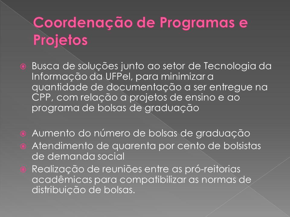  Busca de soluções junto ao setor de Tecnologia da Informação da UFPel, para minimizar a quantidade de documentação a ser entregue na CPP, com relaçã