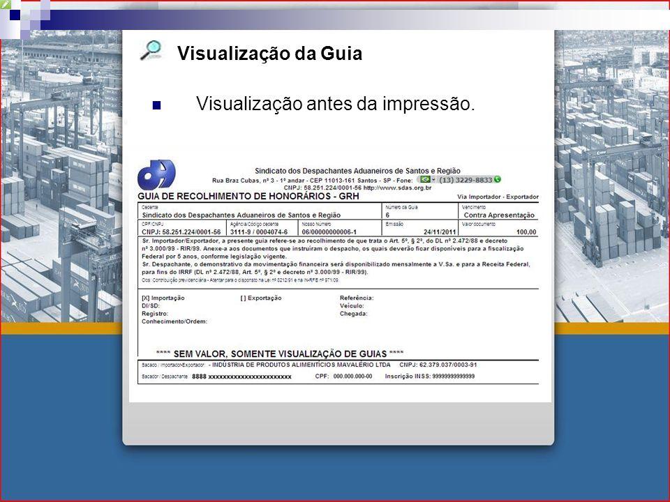 Visualização da Guia Visualização antes da impressão.