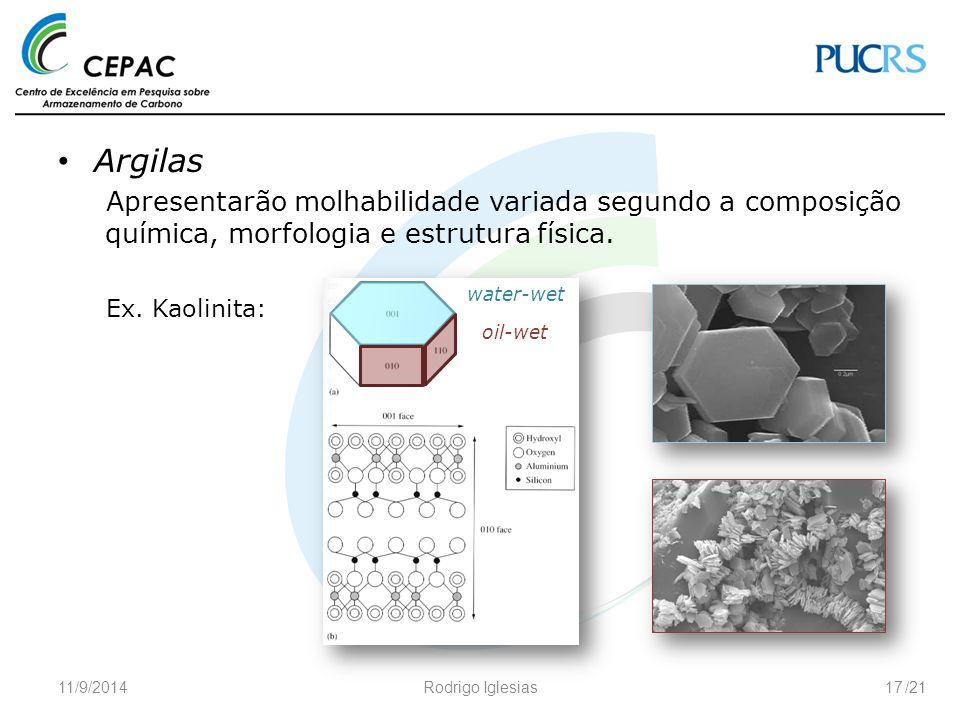 /21 Argilas Apresentarão molhabilidade variada segundo a composição química, morfologia e estrutura física. Ex. Kaolinita: 11/9/2014Rodrigo Iglesias17