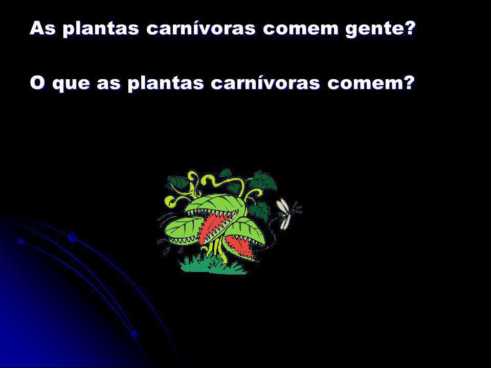 As plantas carnívoras comem gente? O que as plantas carnívoras comem?