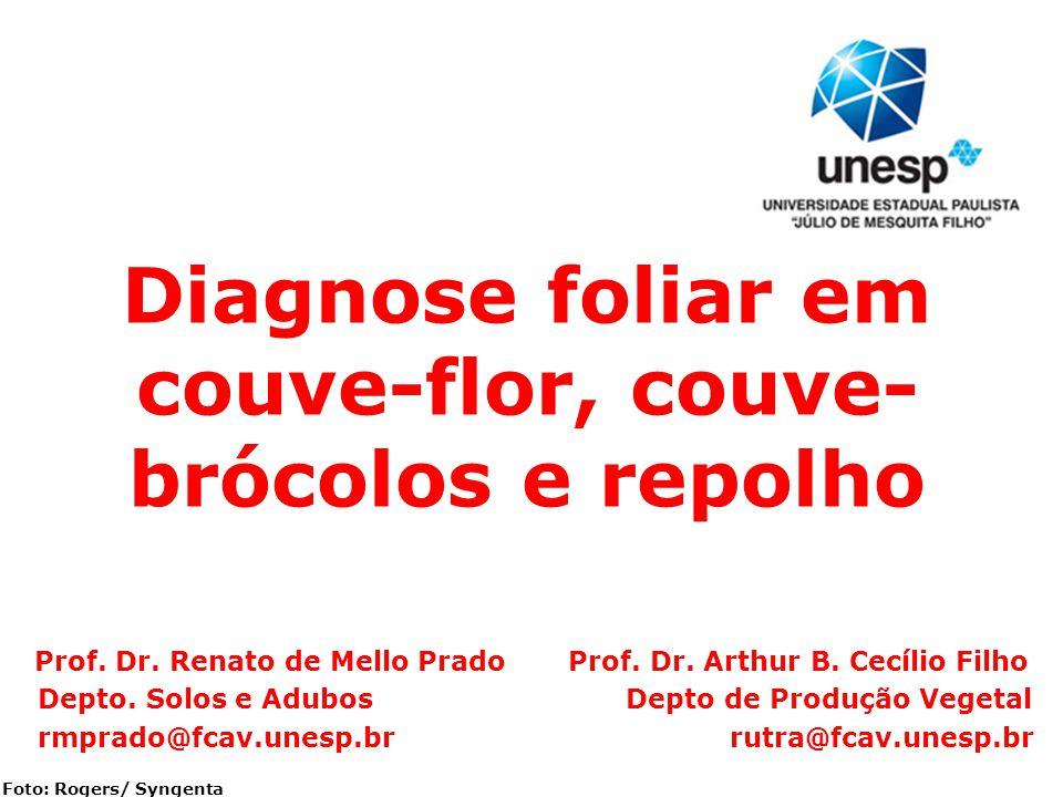 Foto: Rogers/ Syngenta Diagnose foliar em couve-flor, couve- brócolos e repolho Prof. Dr. Renato de Mello Prado Prof. Dr. Arthur B. Cecílio Filho Dept