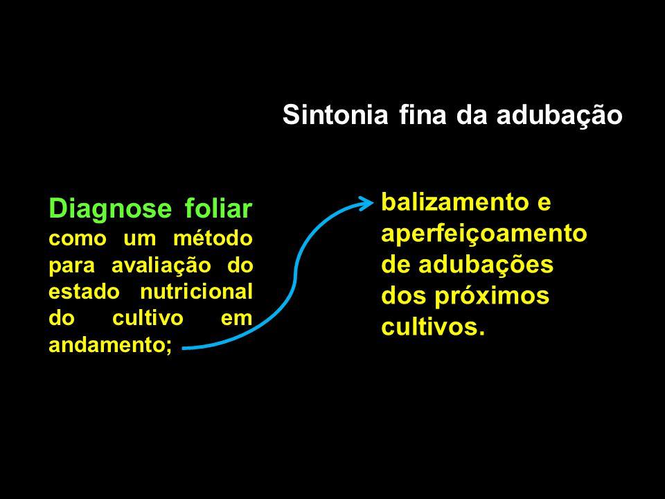 Sintonia fina da adubação Diagnose foliar como um método para avaliação do estado nutricional do cultivo em andamento; balizamento e aperfeiçoamento d