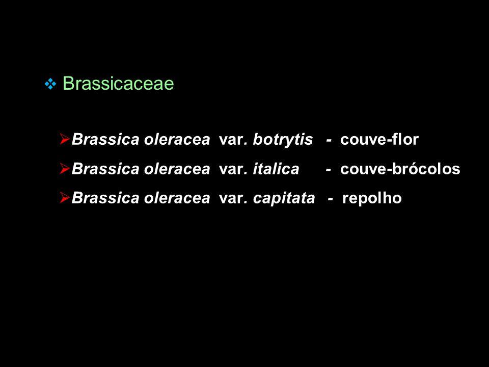  Brassicaceae  Brassica oleracea var. botrytis - couve-flor  Brassica oleracea var. italica - couve-brócolos  Brassica oleracea var. capitata - re