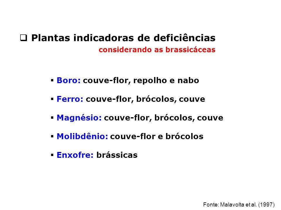  Plantas indicadoras de deficiências considerando as brassicáceas  Boro: couve-flor, repolho e nabo  Ferro: couve-flor, brócolos, couve  Magnésio: