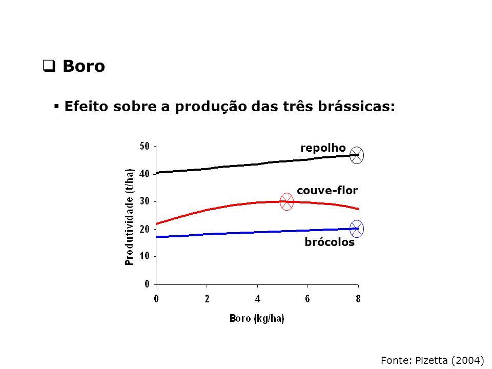 Fonte: Pizetta (2004)  Efeito sobre a produção das três brássicas: repolho couve-flor brócolos  Boro
