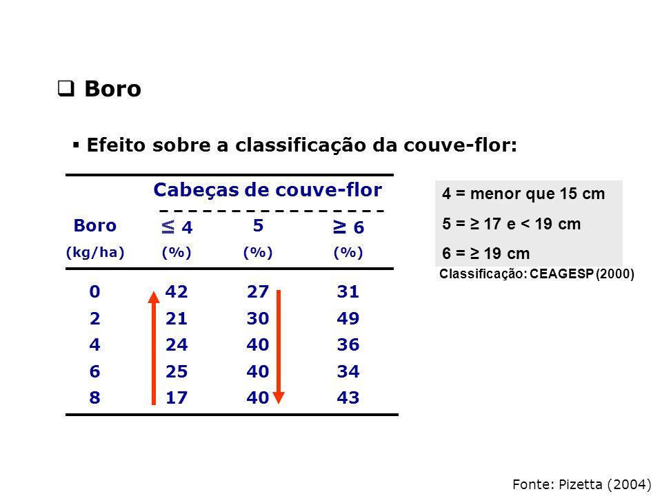 Fonte: Pizetta (2004) Cabeças de couve-flor Boro ≤ 4≤ 4 5 ≥ 6 (kg/ha)(%) 0422731 2213049 4244036 6254034 8174043  Boro Classificação: CEAGESP (2000)