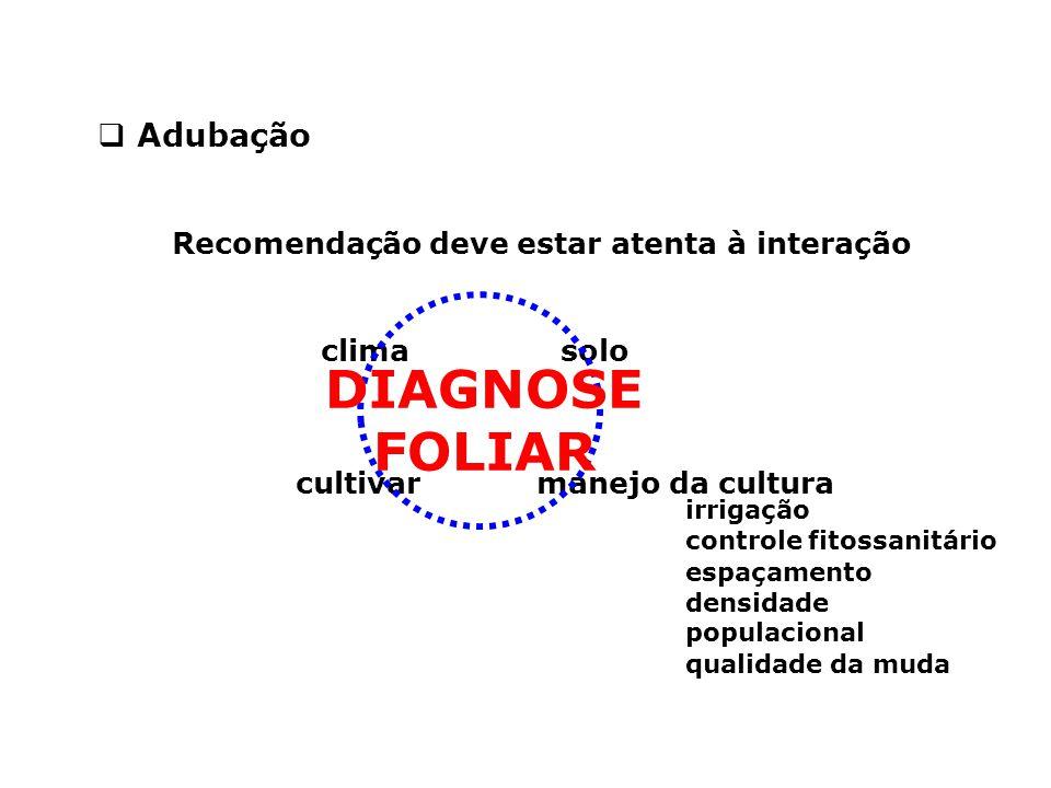 Recomendação deve estar atenta à interação  Adubação solo cultivarmanejo da cultura clima DIAGNOSE FOLIAR irrigação controle fitossanitário espaçamen