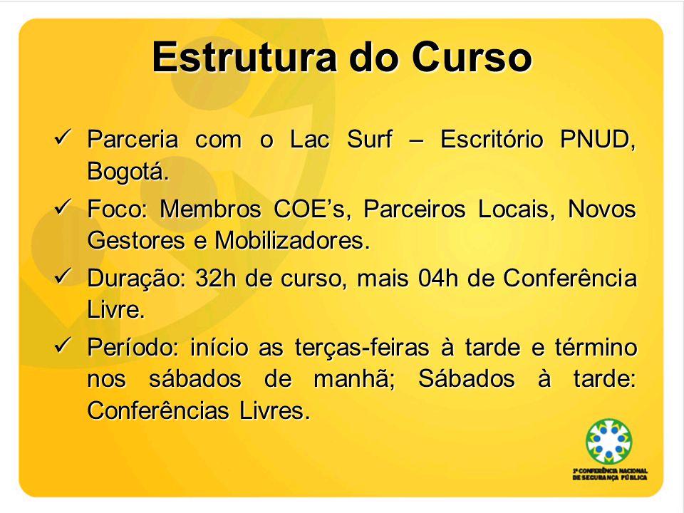 Estrutura do Curso Parceria com o Lac Surf – Escritório PNUD, Bogotá.