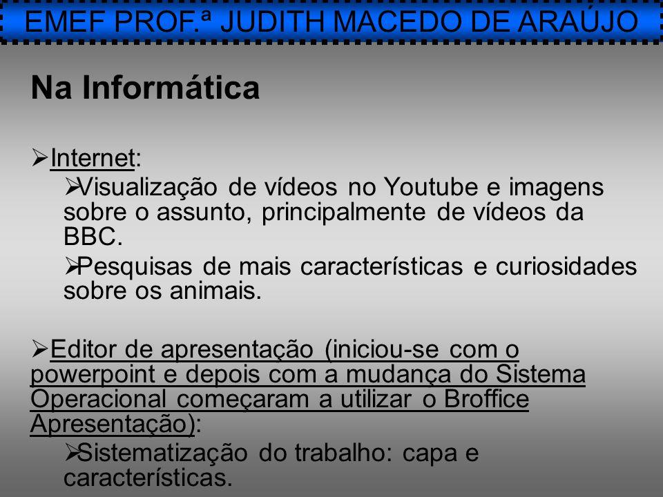 Na Informática  Internet:  Visualização de vídeos no Youtube e imagens sobre o assunto, principalmente de vídeos da BBC.  Pesquisas de mais caracte