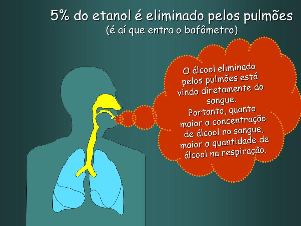 5% do etanol é eliminado pelos pulmões (é aí que entra o bafômetro) O álcool eliminado pelos pulmões está vindo diretamente do sangue.