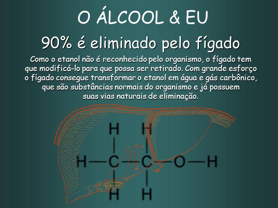 90% é eliminado pelo fígado Como o etanol não é reconhecido pelo organismo, o fígado tem que modificá-lo para que possa ser retirado.