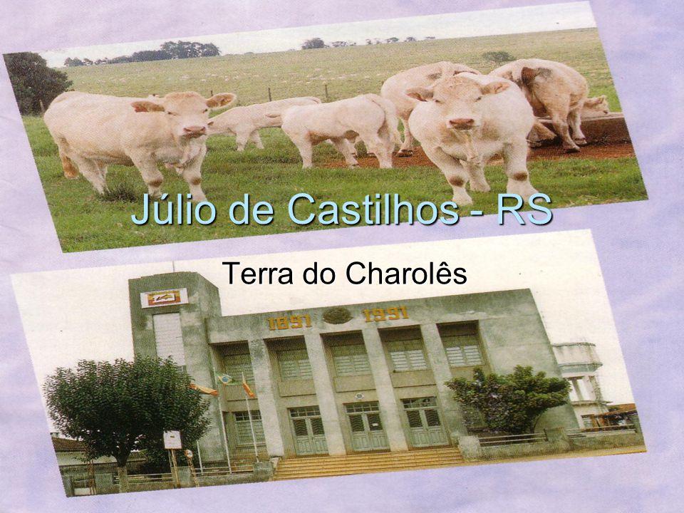 Júlio de Castilhos - RS Terra do Charolês