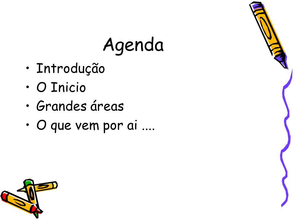 Agenda Introdução O Inicio Grandes áreas O que vem por ai....