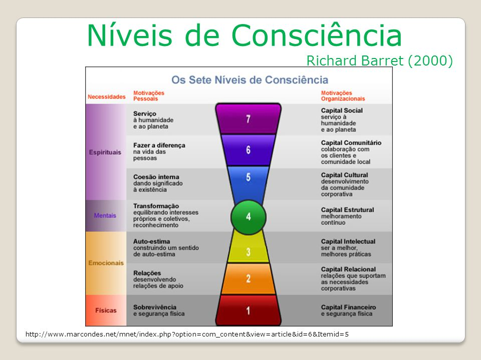 Níveis de Consciência Richard Barret (2000) http://www.marcondes.net/mnet/index.php?option=com_content&view=article&id=6&Itemid=5