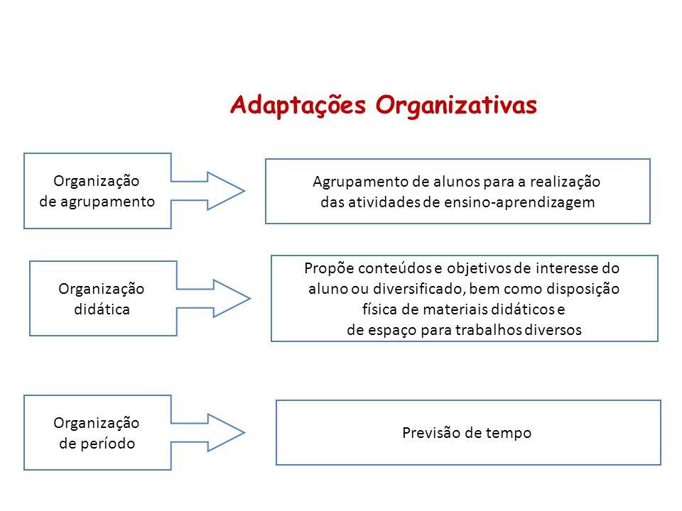 Adaptações Organizativas Agrupamento de alunos para a realização das atividades de ensino-aprendizagem Organização de agrupamento Propõe conteúdos e o