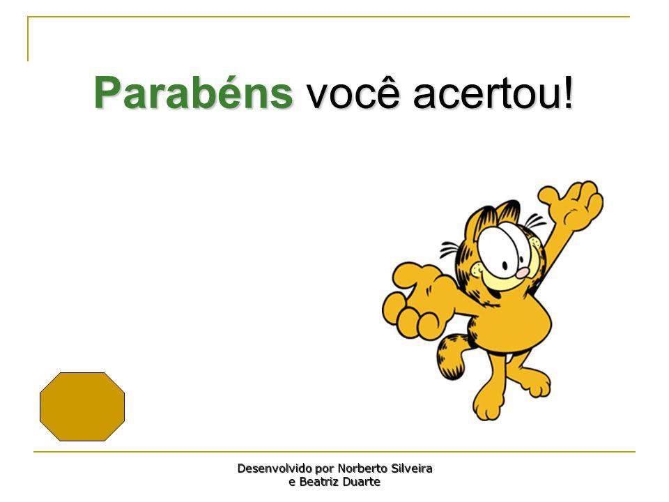 Parabéns você acertou! Desenvolvido por Norberto Silveira e Beatriz Duarte
