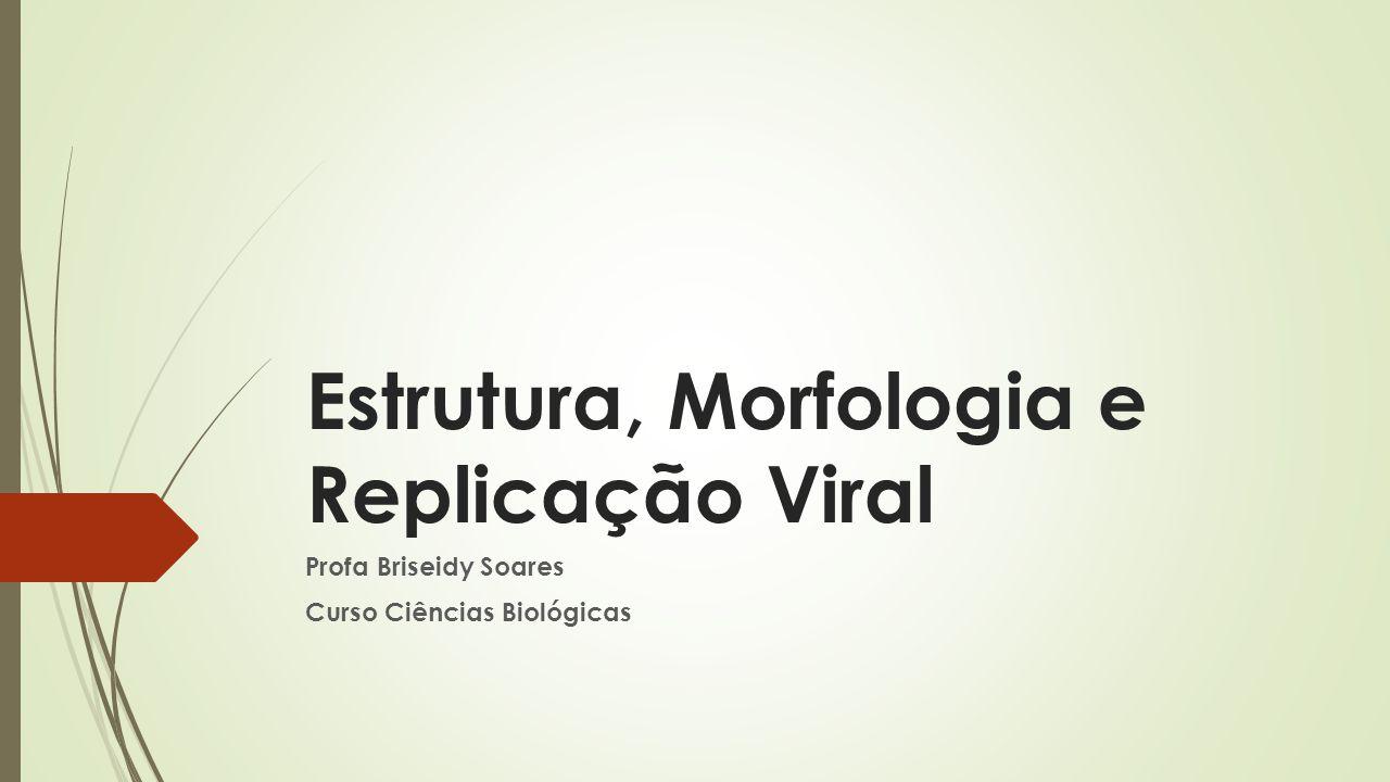 Estrutura, Morfologia e Replicação Viral Profa Briseidy Soares Curso Ciências Biológicas