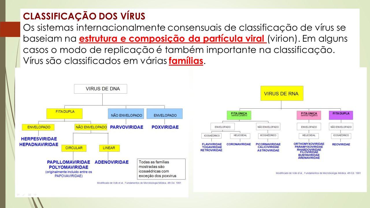 CLASSIFICAÇÃO DOS VÍRUS Os sistemas internacionalmente consensuais de classificação de vírus se baseiam na estrutura e composição da partícula viral (