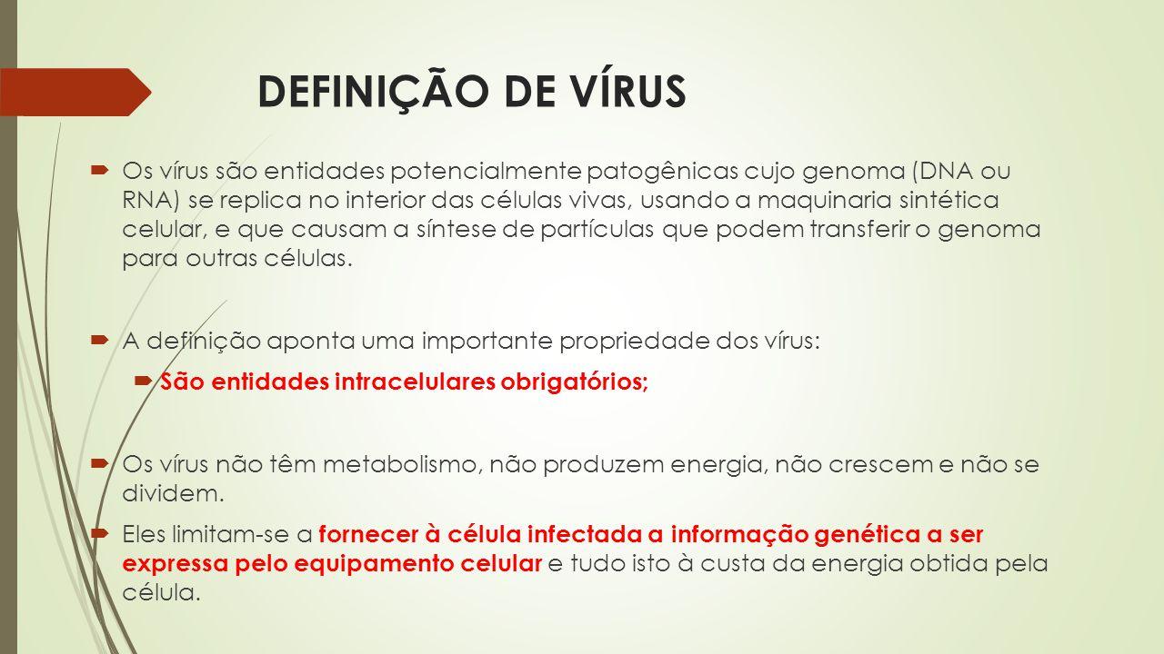 DEFINIÇÃO DE VÍRUS  Os vírus são entidades potencialmente patogênicas cujo genoma (DNA ou RNA) se replica no interior das células vivas, usando a maq