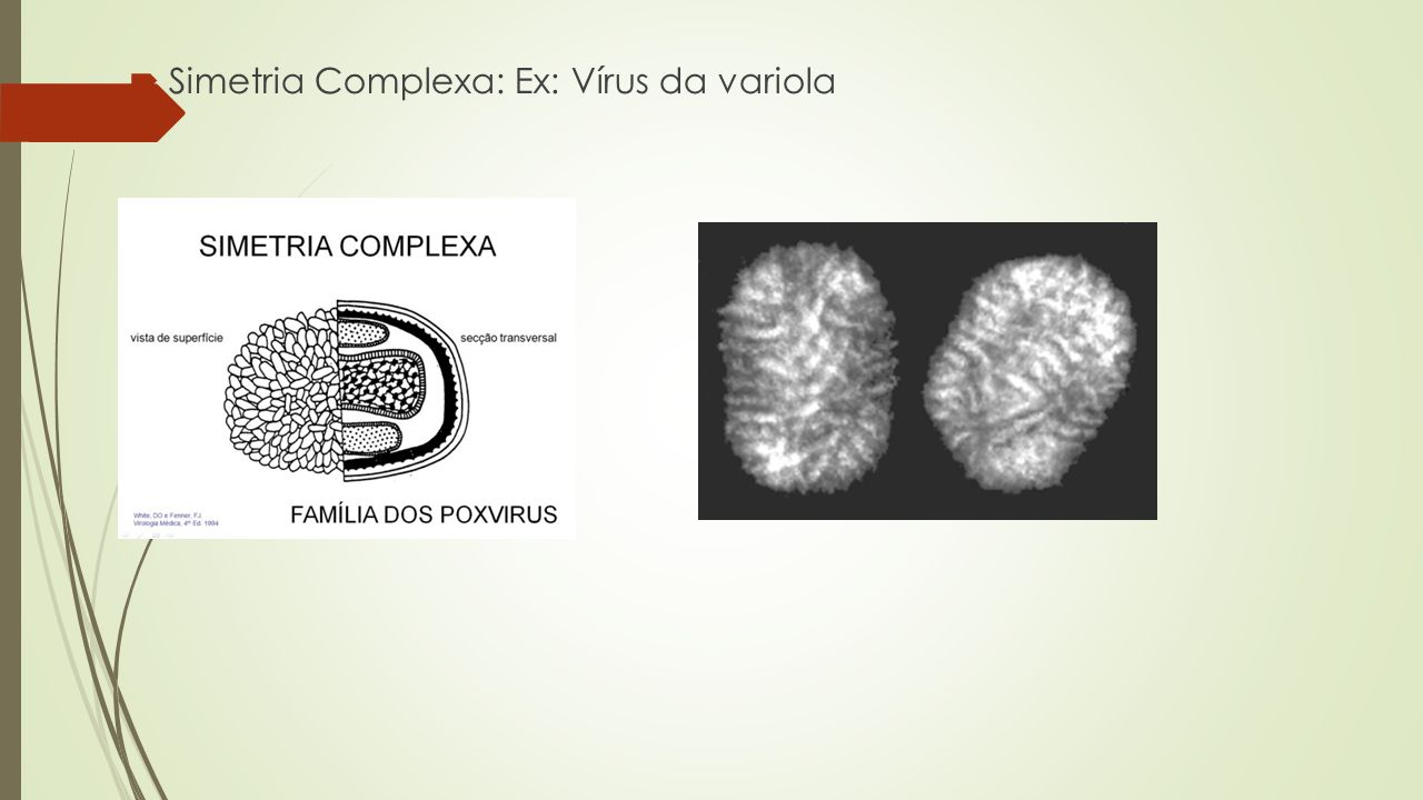  Simetria Complexa: Ex: Vírus da variola