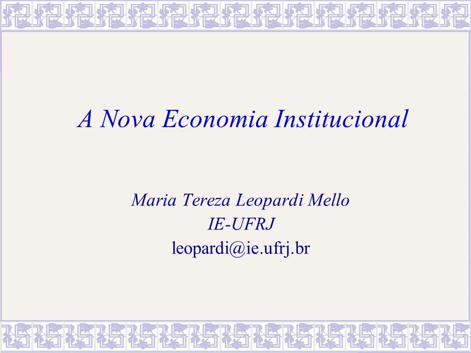MTereza Leopardi Mello - IE/UFRJ2 Sumário 1.NEI – questões comuns; níveis de análise.