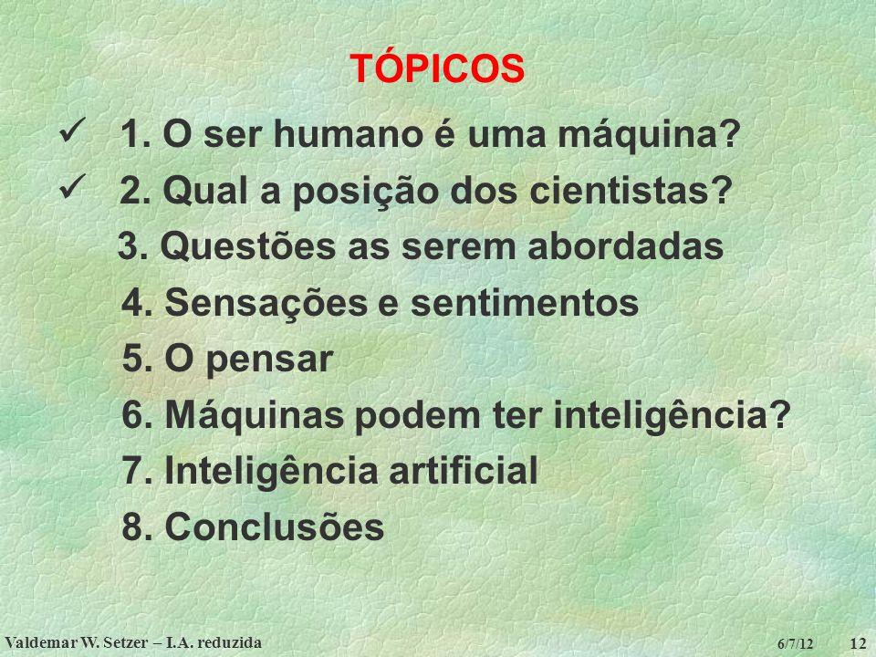 Valdemar W. Setzer – I.A. reduzida 12 6/7/12 TÓPICOS 1. O ser humano é uma máquina? 2. Qual a posição dos cientistas? 3. Questões as serem abordadas 4