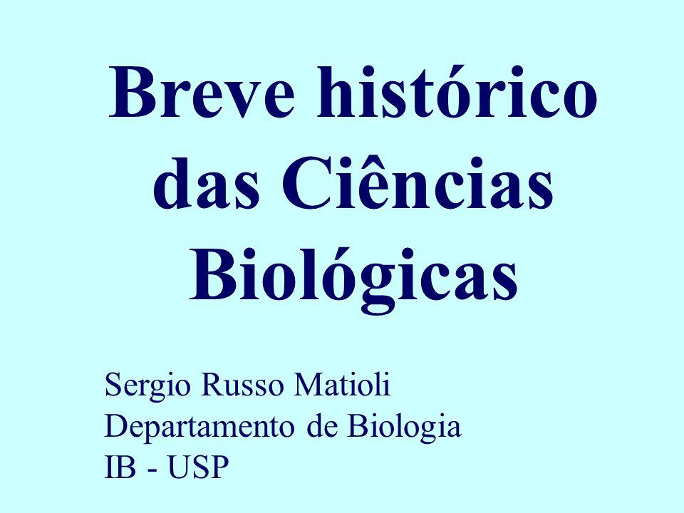 Breve histórico das Ciências Biológicas Sergio Russo Matioli Departamento de Biologia IB - USP