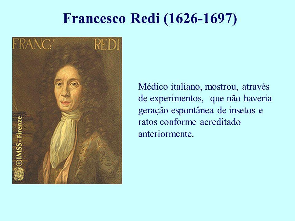 Francesco Redi (1626-1697) Médico italiano, mostrou, através de experimentos, que não haveria geração espontânea de insetos e ratos conforme acreditad