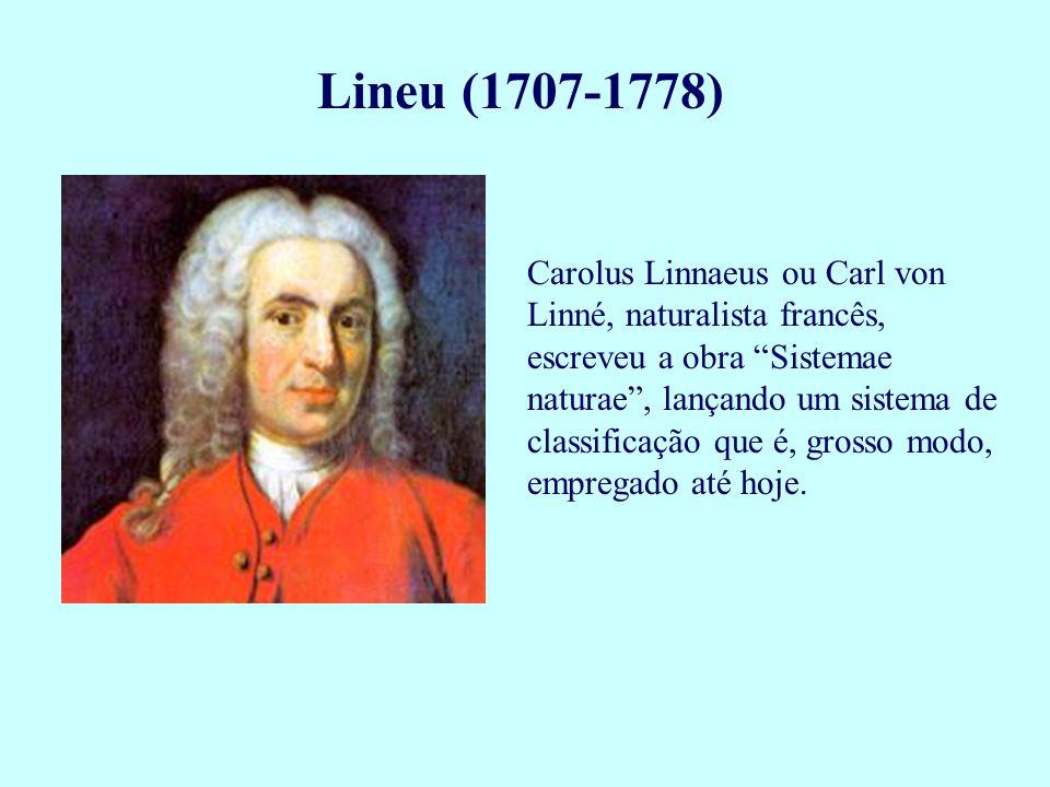 """Lineu (1707-1778) Carolus Linnaeus ou Carl von Linné, naturalista francês, escreveu a obra """"Sistemae naturae"""", lançando um sistema de classificação qu"""