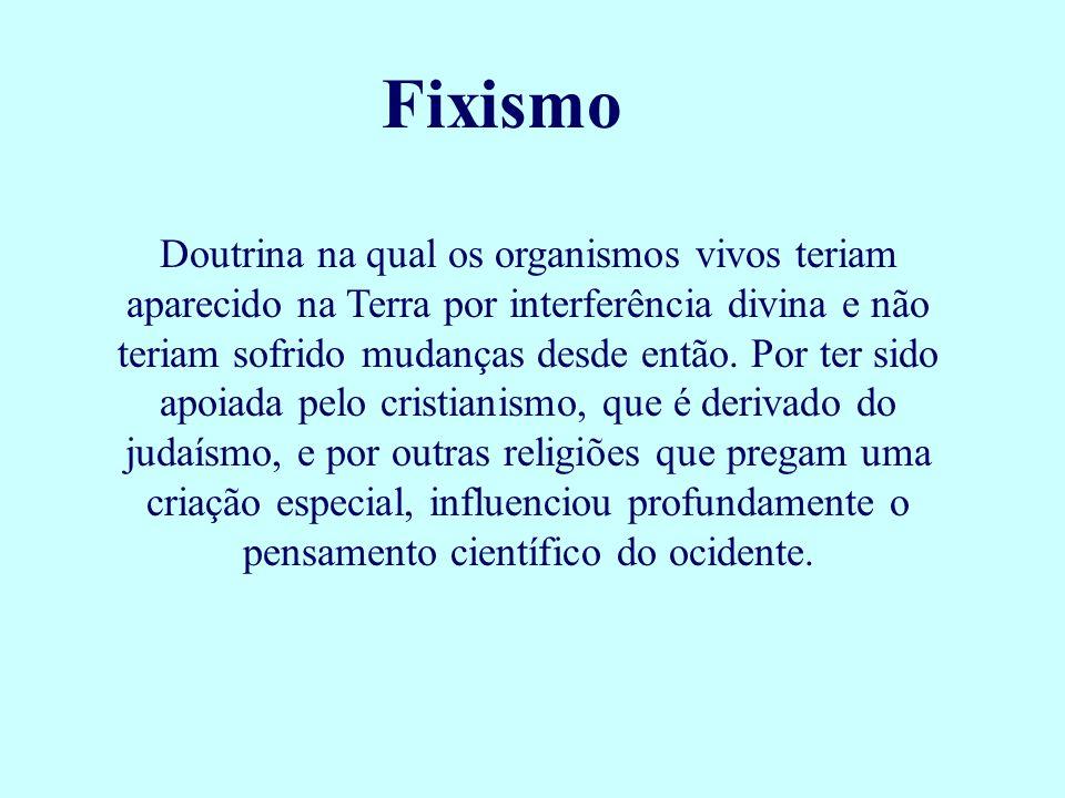 Fixismo Doutrina na qual os organismos vivos teriam aparecido na Terra por interferência divina e não teriam sofrido mudanças desde então. Por ter sid